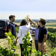 buy wine,winemaker, Buy your wine directly from the winemaker