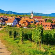 domaine chanzy,winalist,experience,burgundy - 6 must-see places to discover the Alsace wine route - 2021 - 18