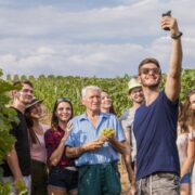 - The treasures of wine tourism: the specifics of each region - 2021 - 3
