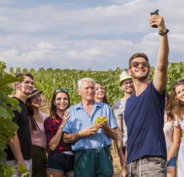 - The treasures of wine tourism: the specifics of each region - 2021 - 15