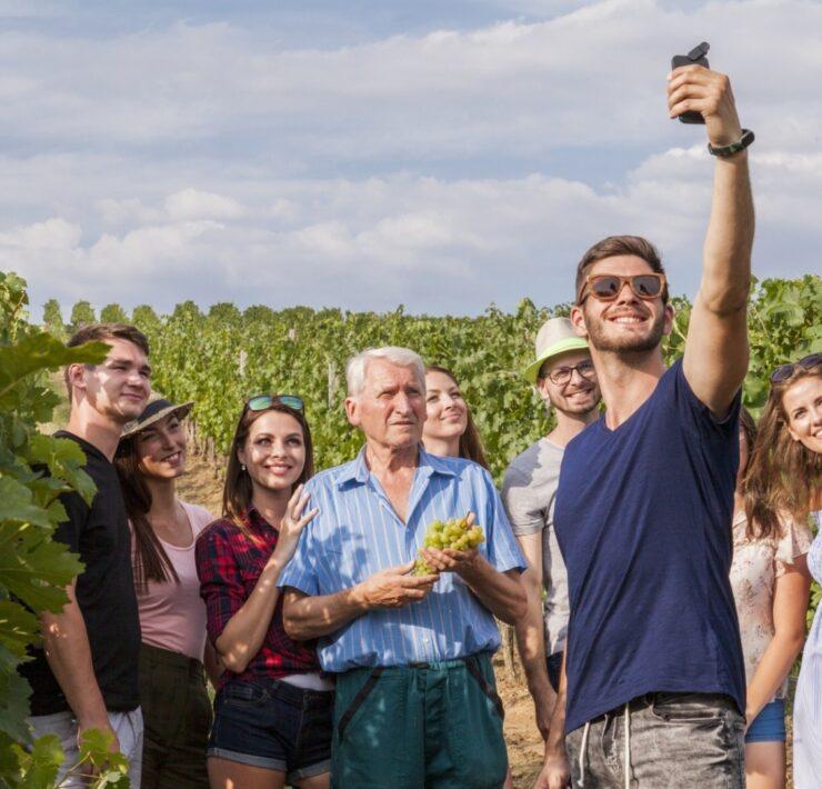 Oenology,Oenology weekend,Oenology initiation,Oenology gift,Oenology stay - The treasures of wine tourism: the specifics of each region - 2021 - 10
